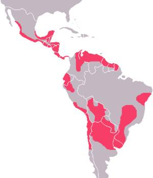 chagas disease distribution map